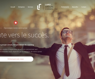 Design d'interface web – Consultants