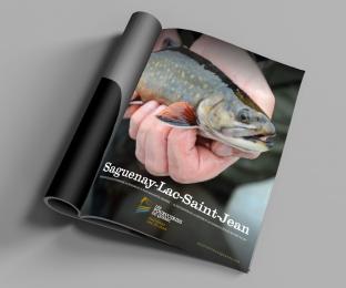 Publicité de magazine