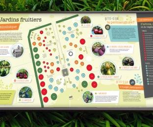 Ville de Matane – jardin d'arbres fruitiers